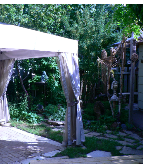 back yard a2006