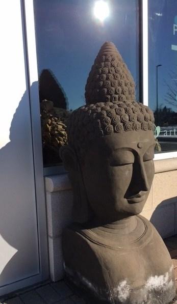 buddha waits 2