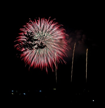 fireworks 2015 MG_3540