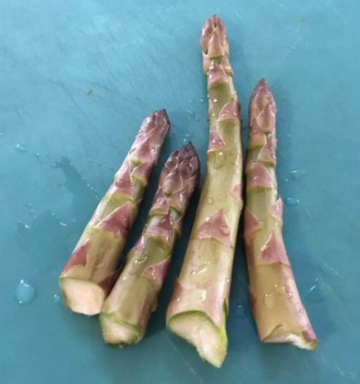 asparagus 1st season 2019 mel