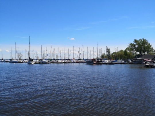 lakeshore marina in the harbour